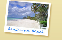 Picture - Rendezvous Beach